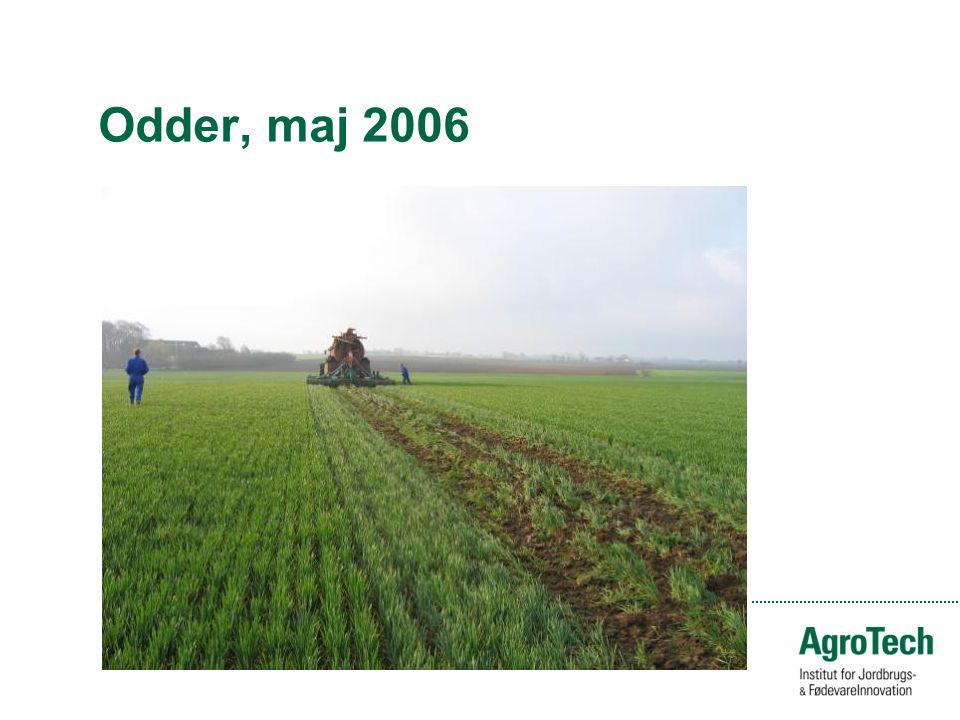Odder, maj 2006