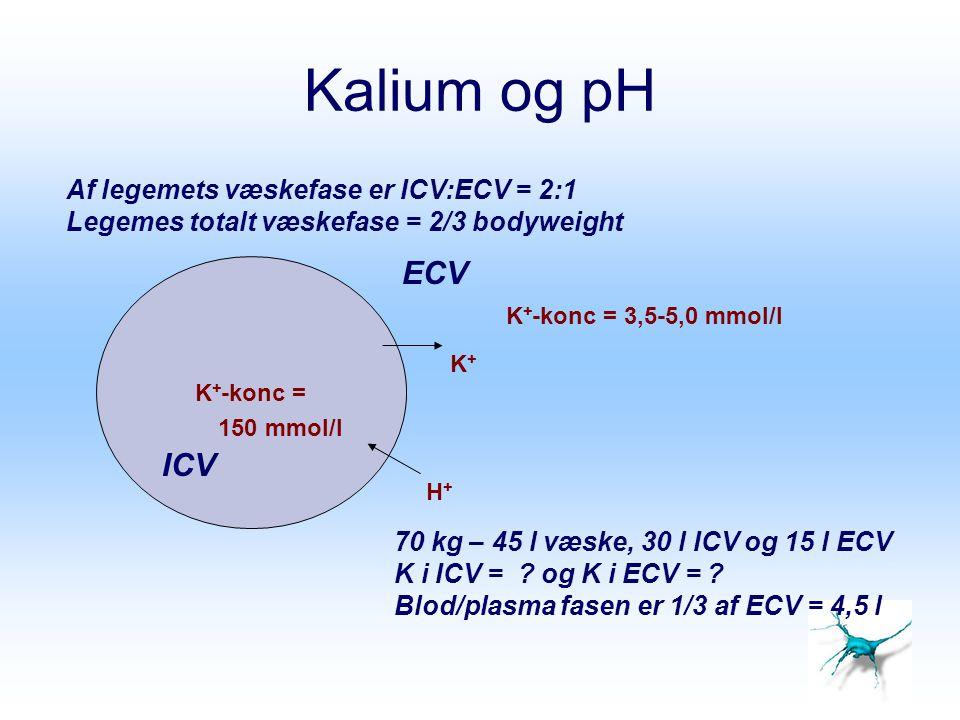 Kalium og pH K + -konc = K+K+ H+H+ K + -konc = 3,5-5,0 mmol/l ECV ICV 70 kg – 45 l væske, 30 l ICV og 15 l ECV K i ICV = ? og K i ECV = ? Blod/plasma