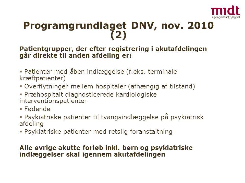 Programgrundlaget DNV, nov.