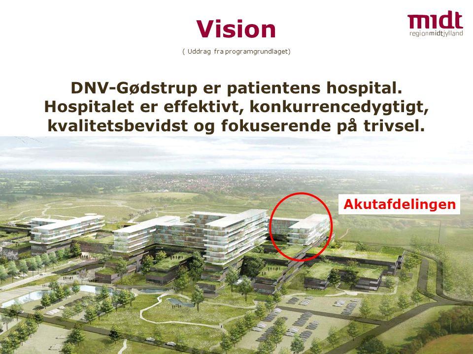 DNV-Gødstrup er patientens hospital.