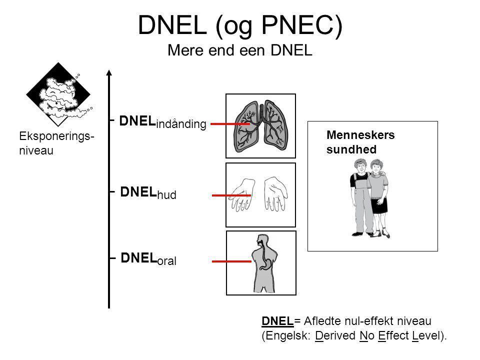 Menneskers sundhed DNEL indånding DNEL hud DNEL oral Eksponerings- niveau DNEL= Afledte nul-effekt niveau (Engelsk: Derived No Effect Level).