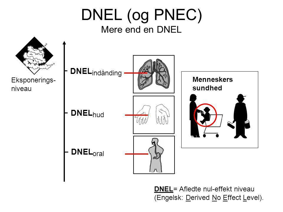Menneskers sundhed DNEL indånding DNEL hud DNEL oral DNEL= Afledte nul-effekt niveau (Engelsk: Derived No Effect Level).