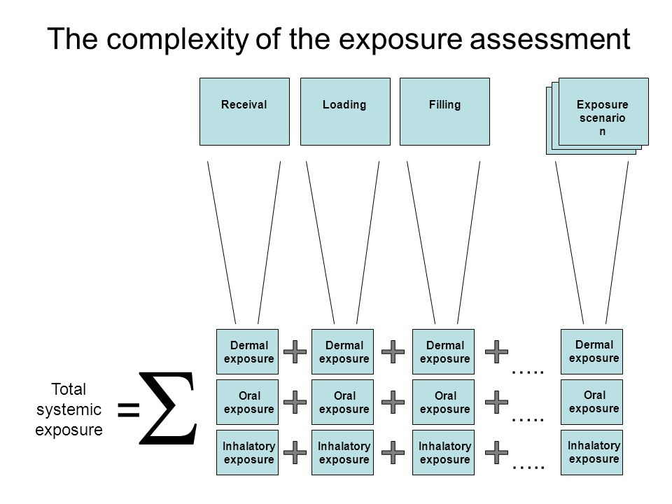 The complexity of the exposure assessment Loading Exposure scenario n ReceivalFilling  Total systemic exposure = Dermal exposure Oral exposure Inhalatory exposure Dermal exposure Oral exposure Inhalatory exposure …..