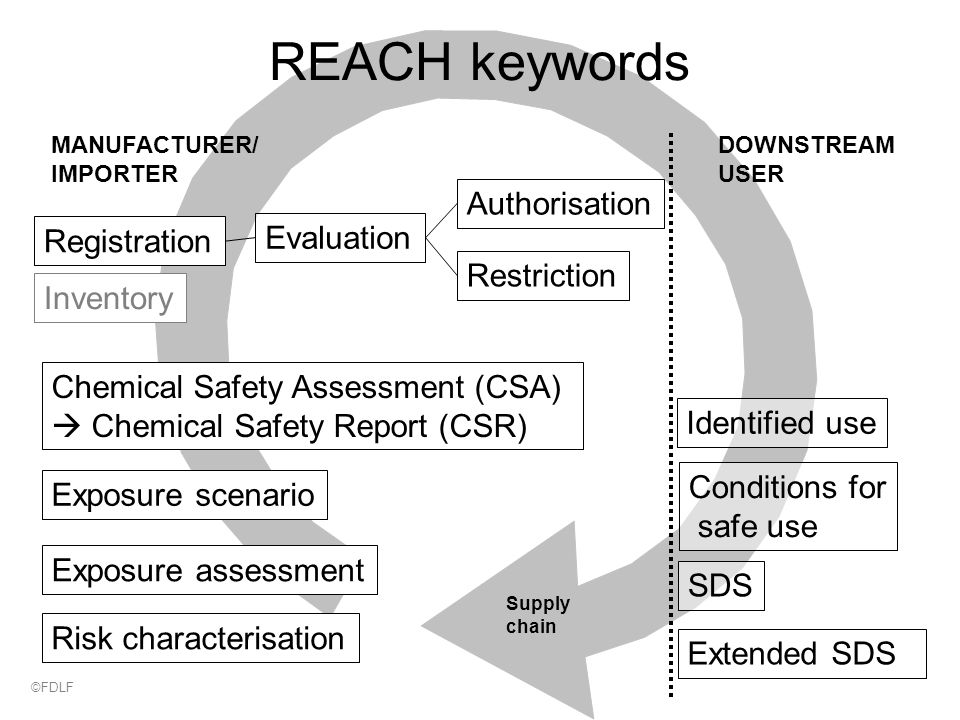 Supply chain MANUFACTURER/ IMPORTER DOWNSTREAM USER Chemical Safety Assessment (CSA)  Chemical Safety Report (CSR) Exposure scenario Exposure assessment Risk characterisation SDS Extended SDS Identified use Conditions for safe use Authorisation Restriction Registration Evaluation REACH keywords Inventory ©FDLF