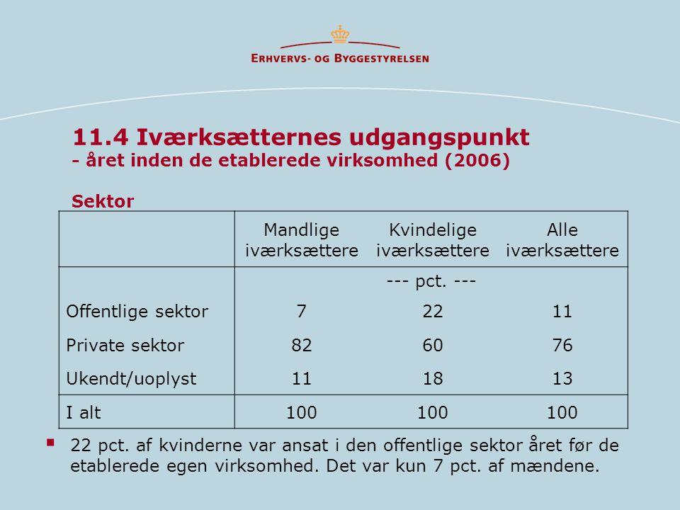 11.4 Iværksætternes udgangspunkt - året inden de etablerede virksomhed (2006) Sektor  22 pct.