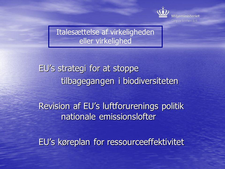 EU's strategi for at stoppe tilbagegangen i biodiversiteten Revision af EU's luftforurenings politik nationale emissionslofter EU's køreplan for ressourceeffektivitet Italesættelse af virkeligheden eller virkelighed
