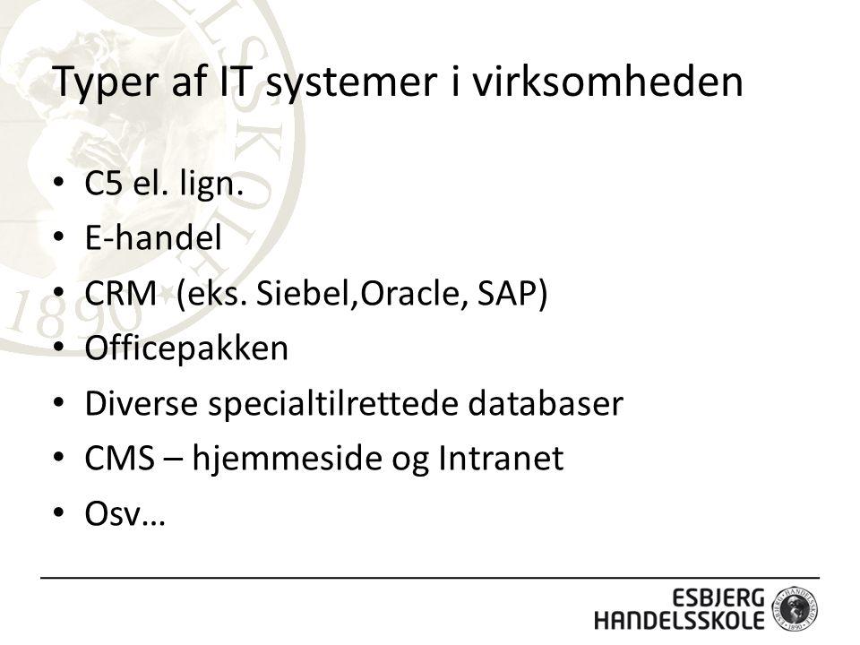 Typer af IT systemer i virksomheden C5 el.lign. E-handel CRM (eks.