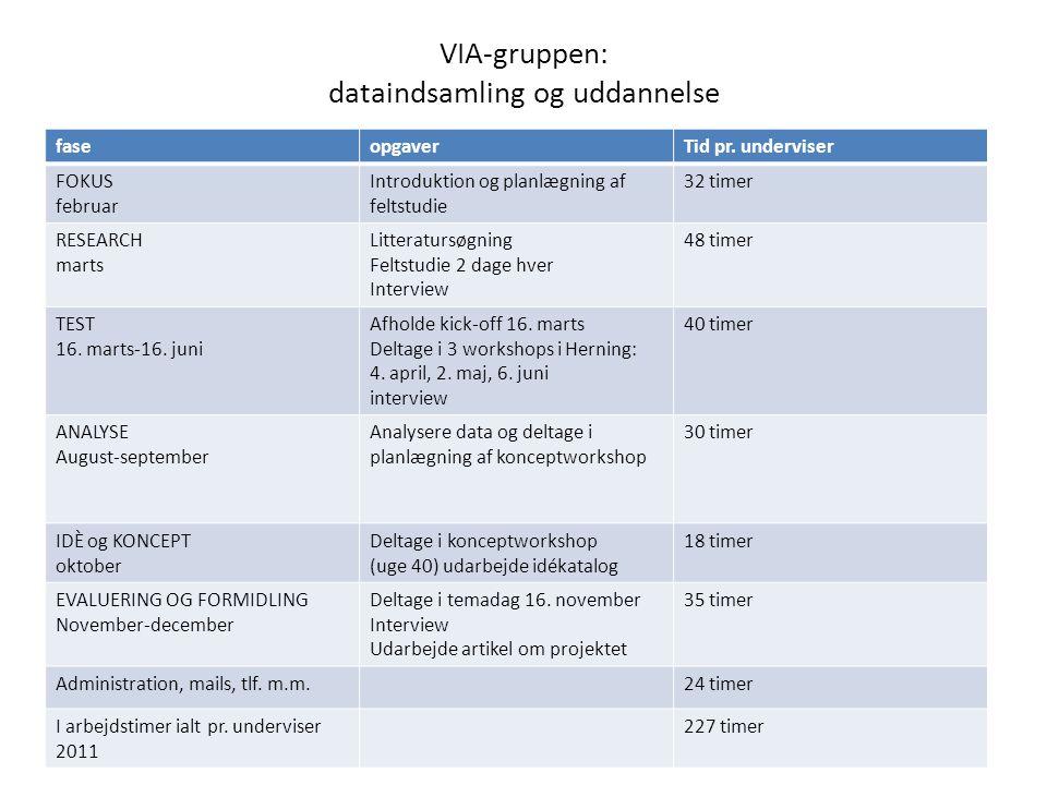VIA-gruppen: dataindsamling og uddannelse faseopgaverTid pr.
