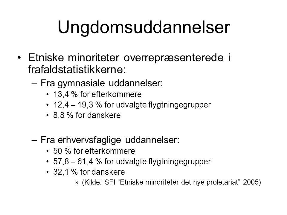 Ungdomsuddannelser Etniske minoriteter overrepræsenterede i frafaldstatistikkerne: –Fra gymnasiale uddannelser: 13,4 % for efterkommere 12,4 – 19,3 % for udvalgte flygtningegrupper 8,8 % for danskere –Fra erhvervsfaglige uddannelser: 50 % for efterkommere 57,8 – 61,4 % for udvalgte flygtningegrupper 32,1 % for danskere »(Kilde: SFI Etniske minoriteter det nye proletariat 2005)
