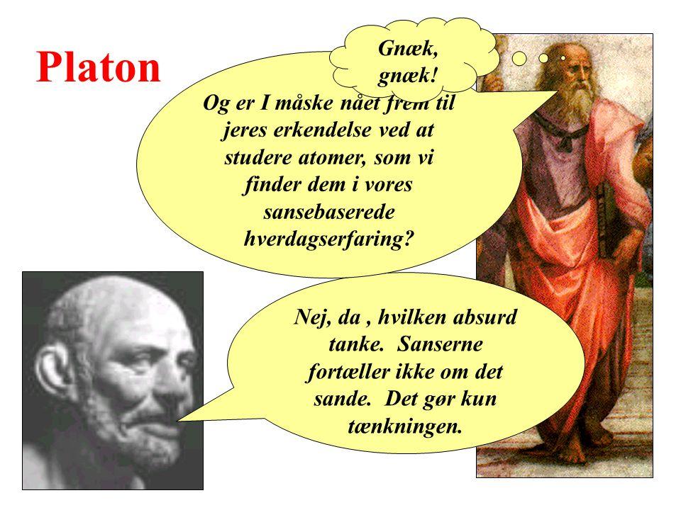 Platon Nej, da, hvilken absurd tanke. Sanserne fortæller ikke om det sande.