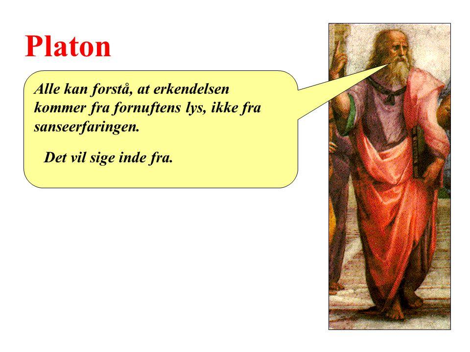 Platon Alle kan forstå, at erkendelsen kommer fra fornuftens lys, ikke fra sanseerfaringen.