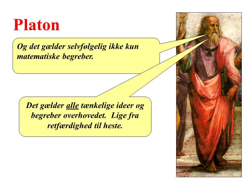 Platon Og det gælder selvfølgelig ikke kun matematiske begreber.