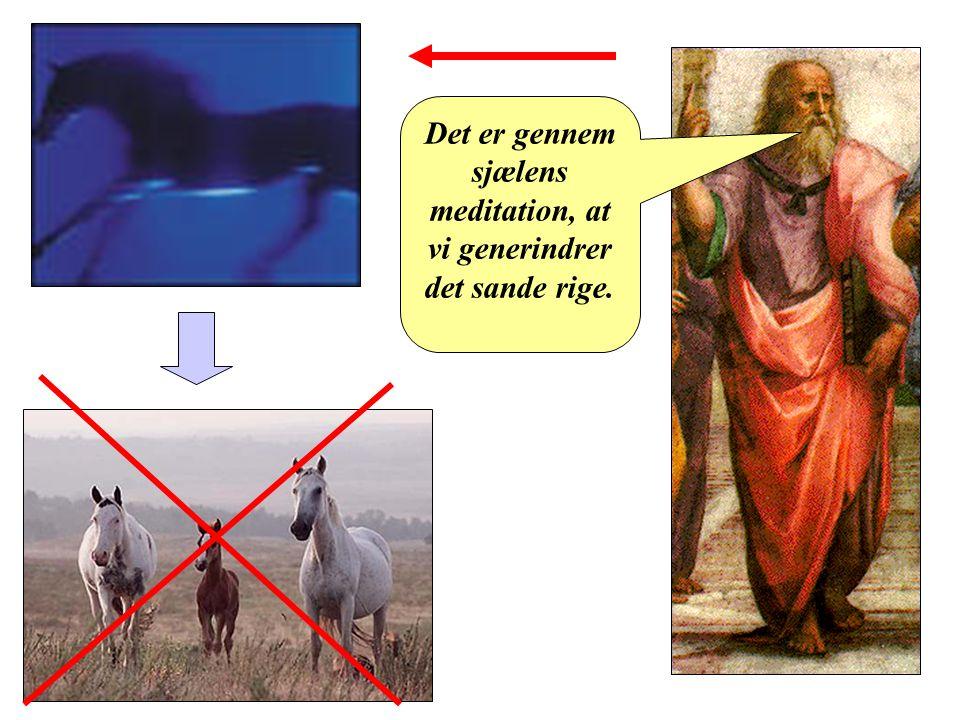 Platon Det er gennem sjælens meditation, at vi generindrer det sande rige.