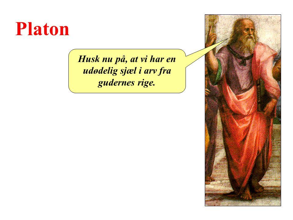 Platon Husk nu på, at vi har en udødelig sjæl i arv fra gudernes rige.