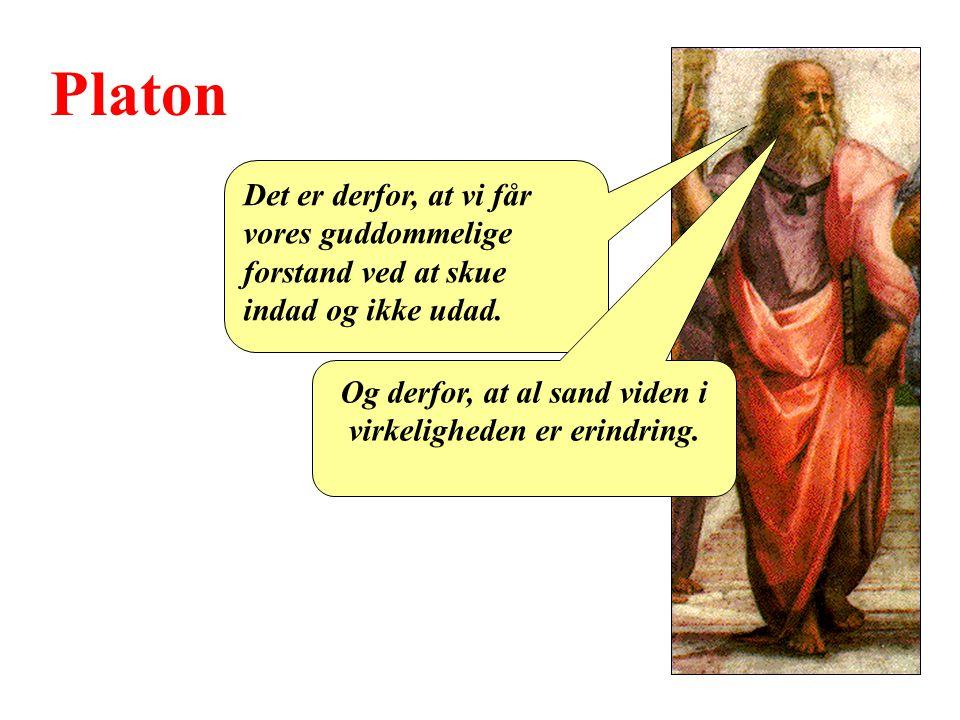 Platon Det er derfor, at vi får vores guddommelige forstand ved at skue indad og ikke udad.