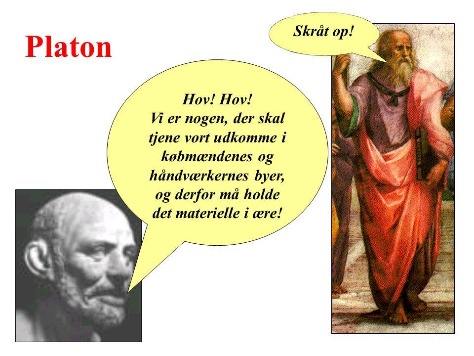 Platon Hov.