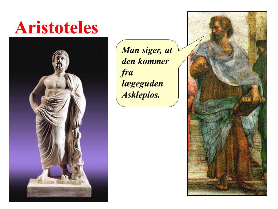 Aristoteles Man siger, at den kommer fra lægeguden Asklepios.