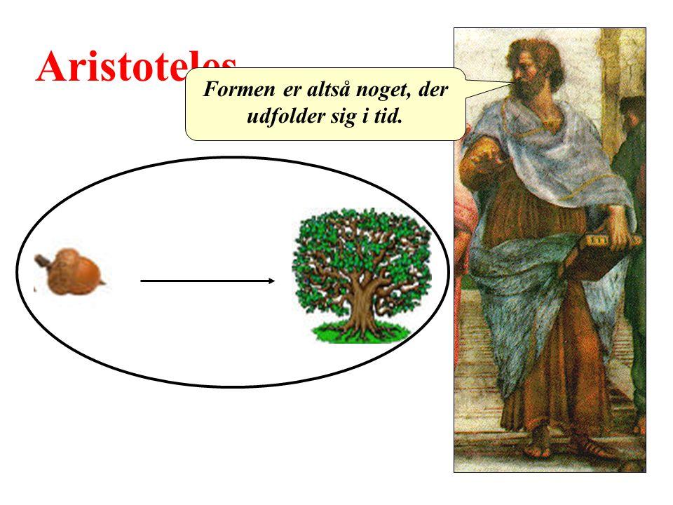 Aristoteles Formen er altså noget, der udfolder sig i tid.