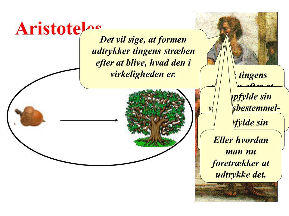 Aristoteles Det vil sige, at formen udtrykker tingens stræben efter at blive, hvad den i virkeligheden er.