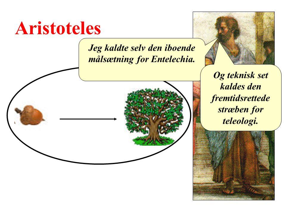 Aristoteles Jeg kaldte selv den iboende målsætning for Entelechia.