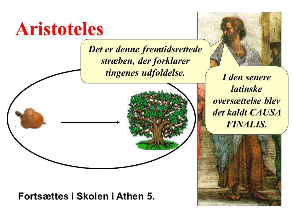 Aristoteles Det er denne fremtidsrettede stræben, der forklarer tingenes udfoldelse.