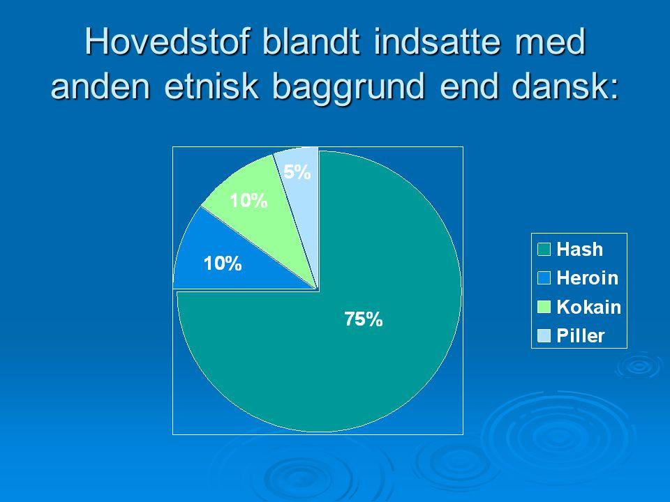 Hovedstof blandt indsatte med anden etnisk baggrund end dansk: