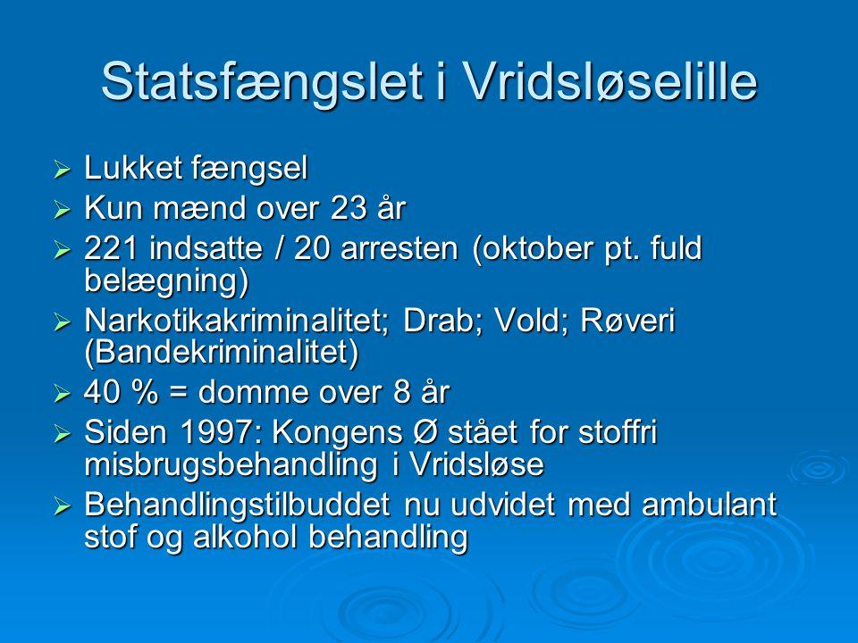 Statsfængslet i Vridsløselille  Lukket fængsel  Kun mænd over 23 år  221 indsatte / 20 arresten (oktober pt.