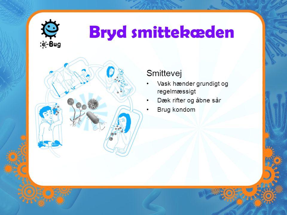 Bryd smittekæden Smittevej Vask hænder grundigt og regelmæssigt Dæk rifter og åbne sår Brug kondom