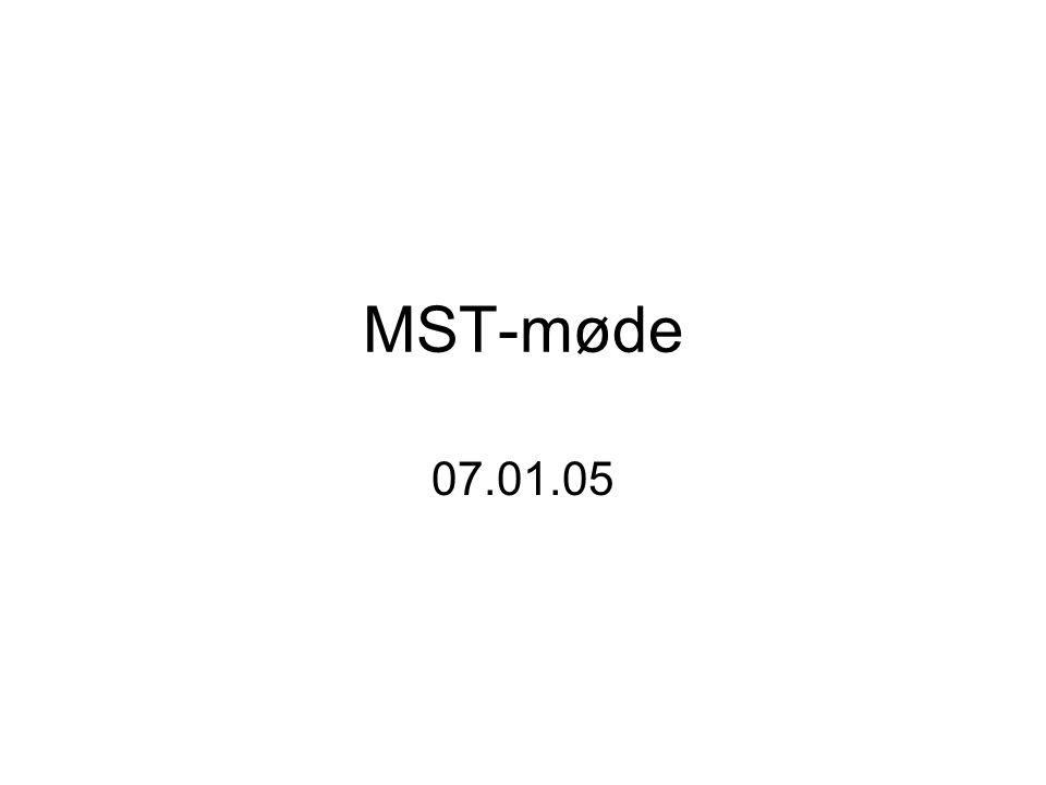 MST-møde 07.01.05