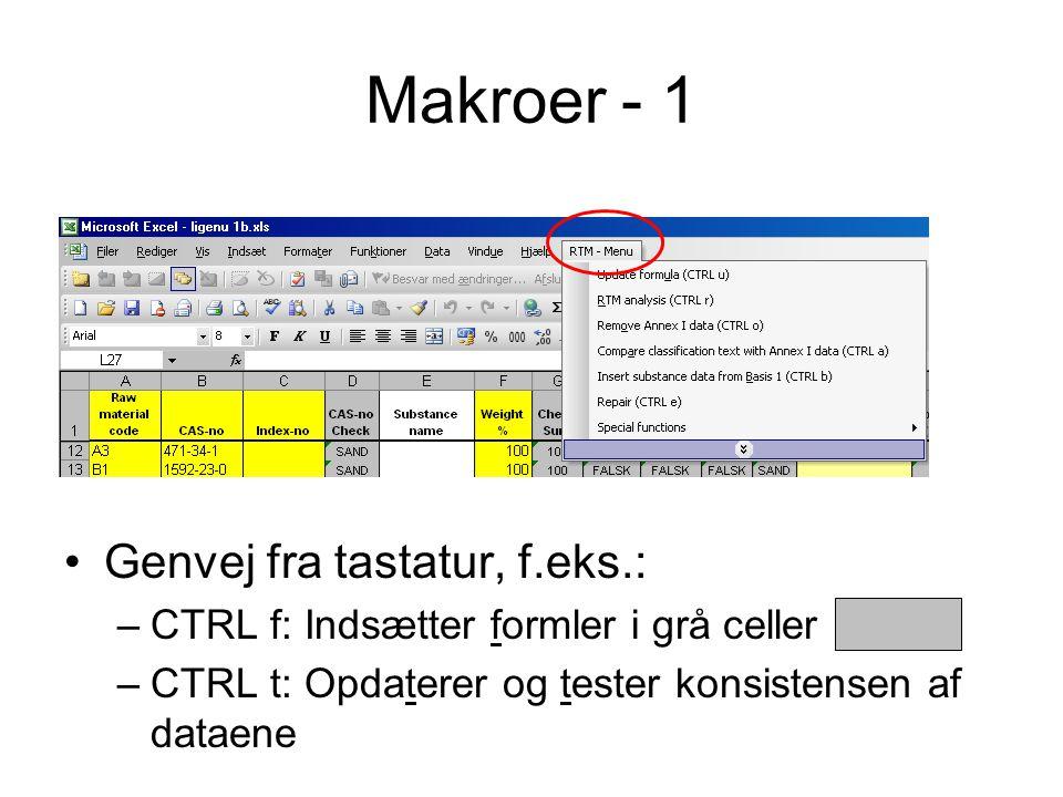 Makroer - 1 Genvej fra tastatur, f.eks.: –CTRL f: Indsætter formler i grå celler –CTRL t: Opdaterer og tester konsistensen af dataene