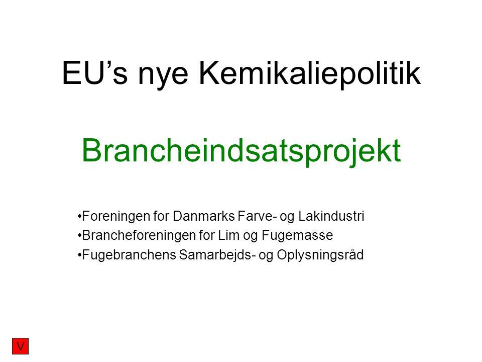 EU's nye Kemikaliepolitik Brancheindsatsprojekt Foreningen for Danmarks Farve- og Lakindustri Brancheforeningen for Lim og Fugemasse Fugebranchens Samarbejds- og Oplysningsråd V