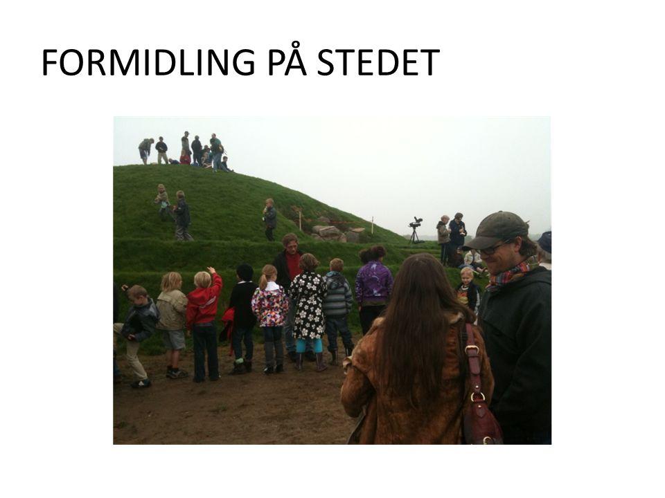 FORMIDLING PÅ STEDET