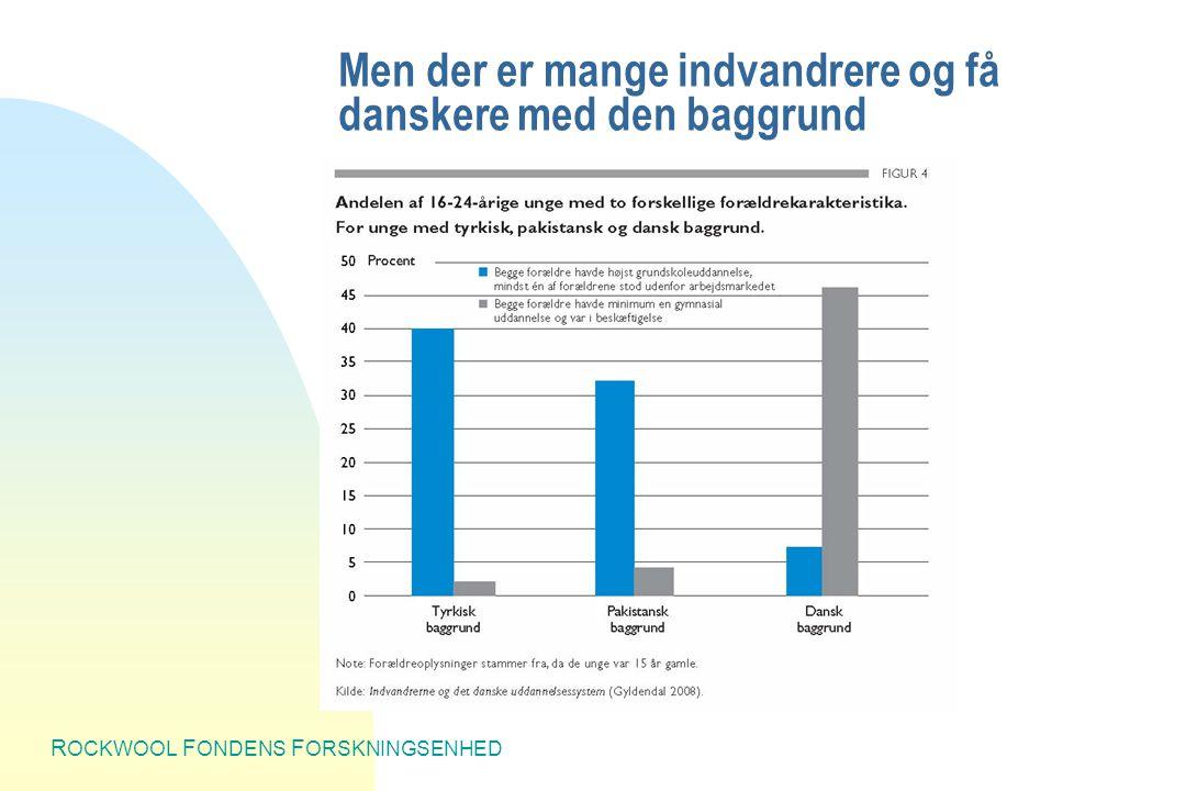 R OCKWOOL F ONDENS F ORSKNINGSENHED Men der er mange indvandrere og få danskere med den baggrund
