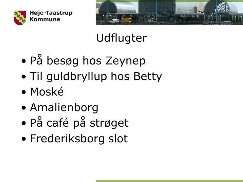 Udflugter På besøg hos Zeynep Til guldbryllup hos Betty Moské Amalienborg På café på strøget Frederiksborg slot