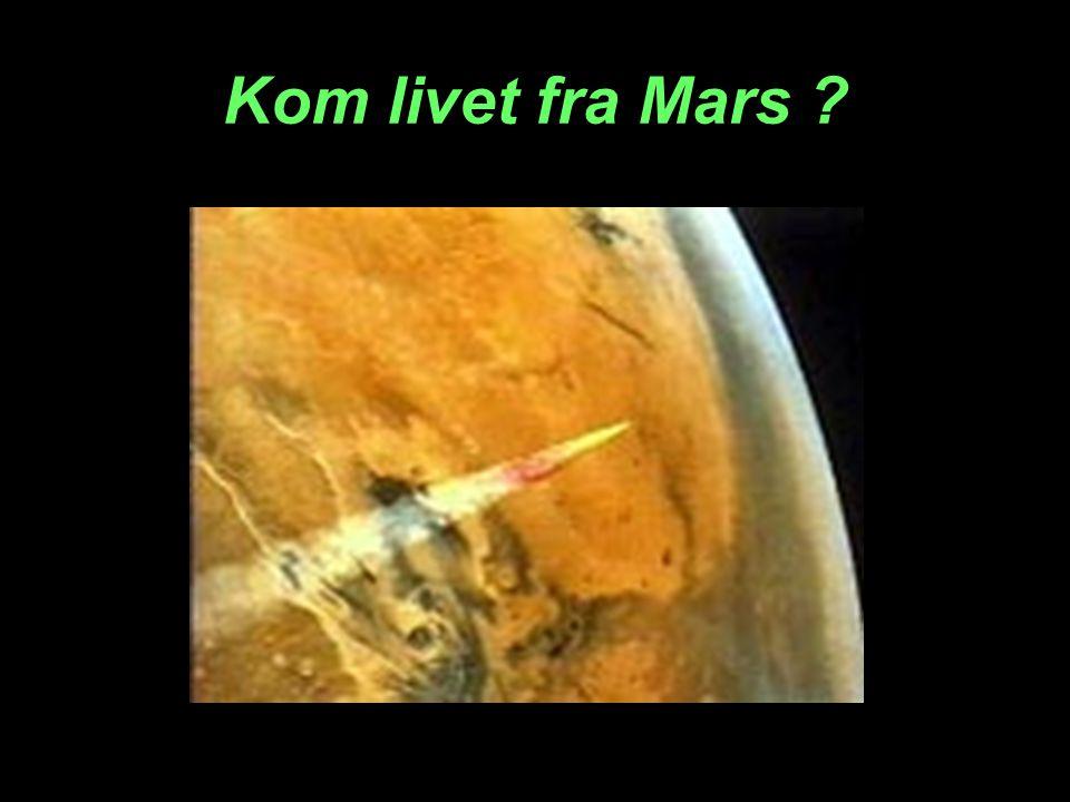 Kom livet fra Mars ?