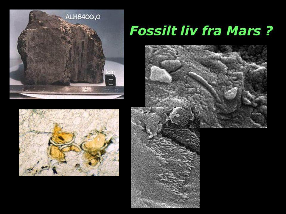 Fossilt liv fra Mars ?