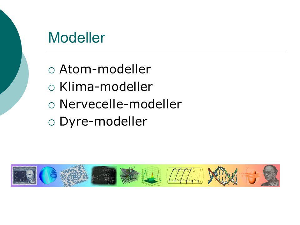 Modeller  Atom-modeller  Klima-modeller  Nervecelle-modeller  Dyre-modeller