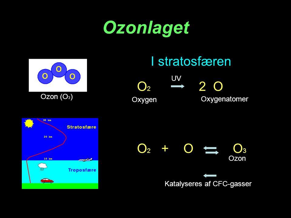 Millers forsøg 1953 Stanley Miller Baser Aminosyrer Sukkerstoffer Porphyrin Lyn-udladninger og UV-lys