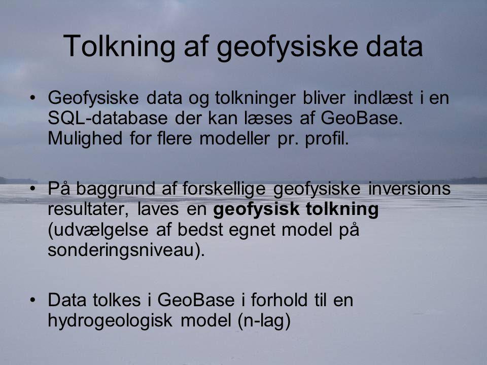Tolkning af geofysiske data Geofysiske data og tolkninger bliver indlæst i en SQL-database der kan læses af GeoBase.