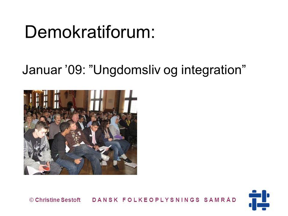 Januar '09: Ungdomsliv og integration © Christine Sestoft D A N S K F O L K E O P L Y S N I N G S S A M R Å D Demokratiforum:
