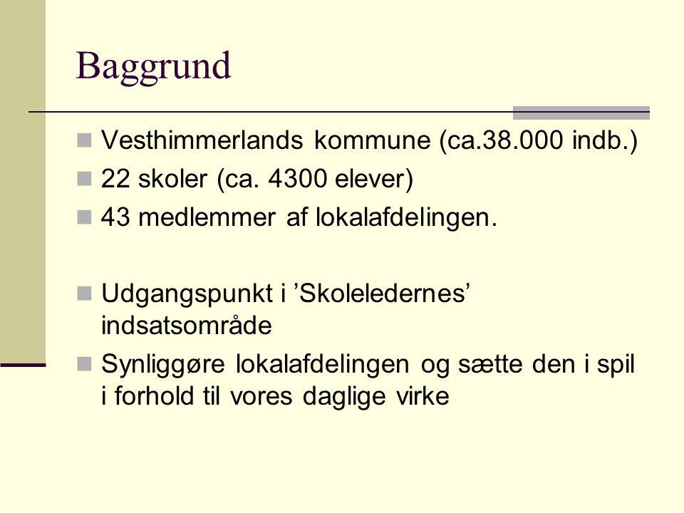 Baggrund Vesthimmerlands kommune (ca.38.000 indb.) 22 skoler (ca.