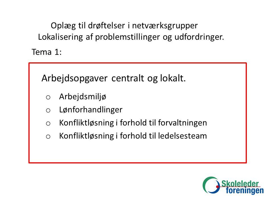 Oplæg til drøftelser i netværksgrupper Lokalisering af problemstillinger og udfordringer.