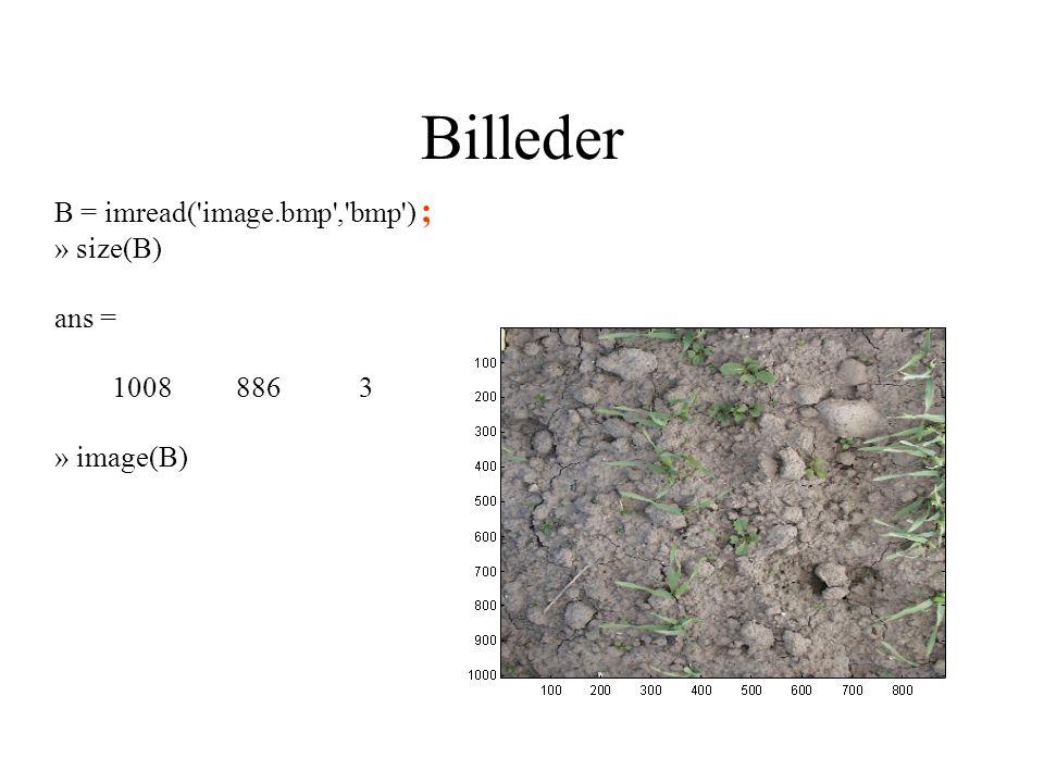 Billeder B = imread( image.bmp , bmp ) ; » size(B) ans = 1008 886 3 » image(B)