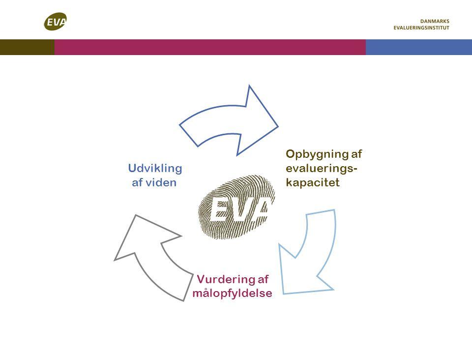 Opbygning af evaluerings- kapacitet Vurdering af målopfyldelse Udvikling af viden