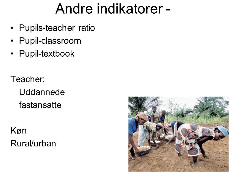 Andre indikatorer - Pupils-teacher ratio Pupil-classroom Pupil-textbook Teacher; Uddannede fastansatte Køn Rural/urban