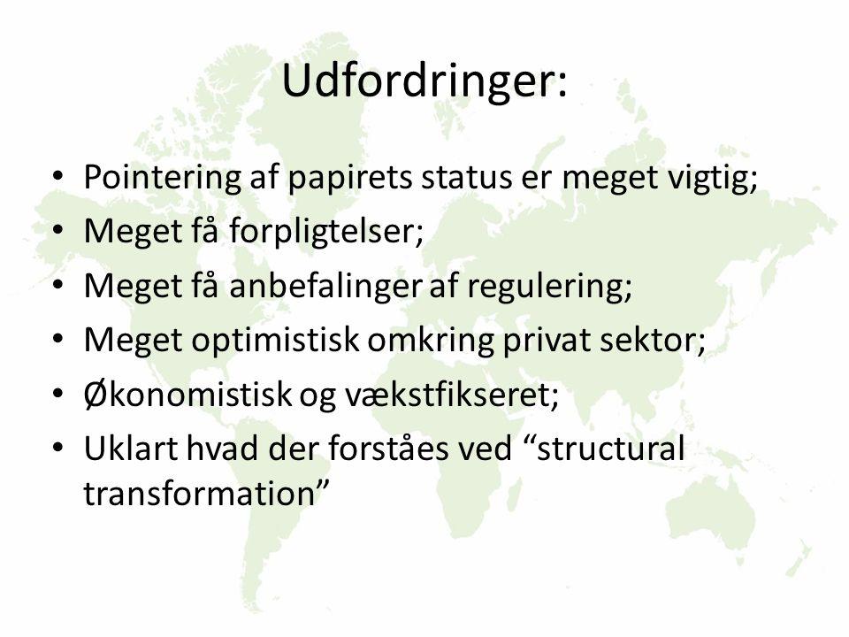 Udfordringer: Pointering af papirets status er meget vigtig; Meget få forpligtelser; Meget få anbefalinger af regulering; Meget optimistisk omkring privat sektor; Økonomistisk og vækstfikseret; Uklart hvad der forståes ved structural transformation