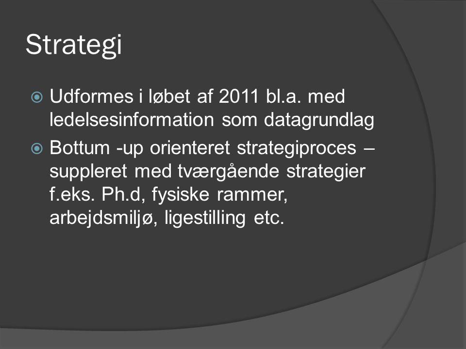 Strategi  Udformes i løbet af 2011 bl.a.
