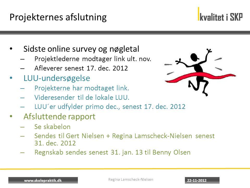 www.skolepraktik.dk Projekternes afslutning Sidste online survey og nøgletal – Projektlederne modtager link ult.