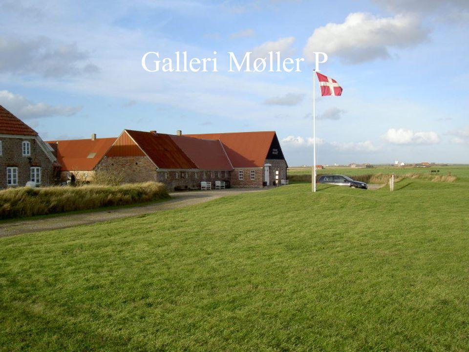Galleri Møller P
