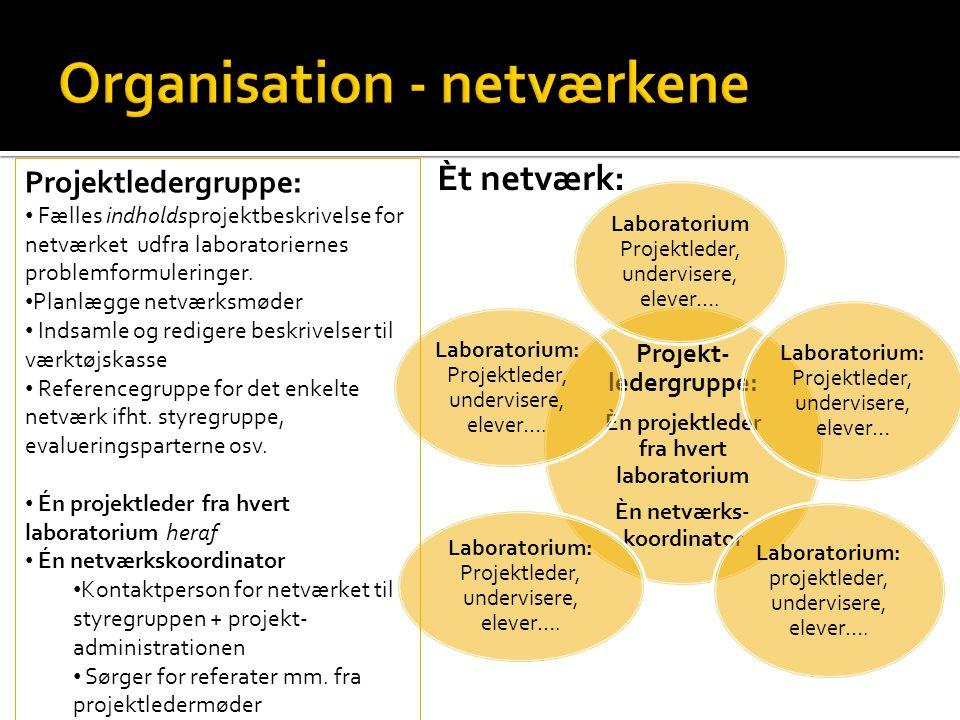 Projekt- ledergruppe: Èn projektleder fra hvert laboratorium Èn netværks- koordinator Laboratorium Projektleder, undervisere, elever….